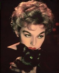 kimnovak1